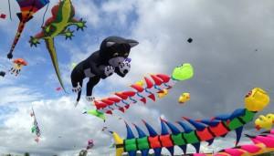 Gujarat kites festivals
