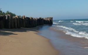 AURO BEACH 1