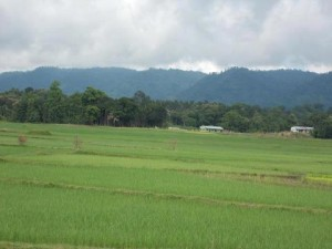 A view of Jampui Hills in the East from the plains of Kanchanpur