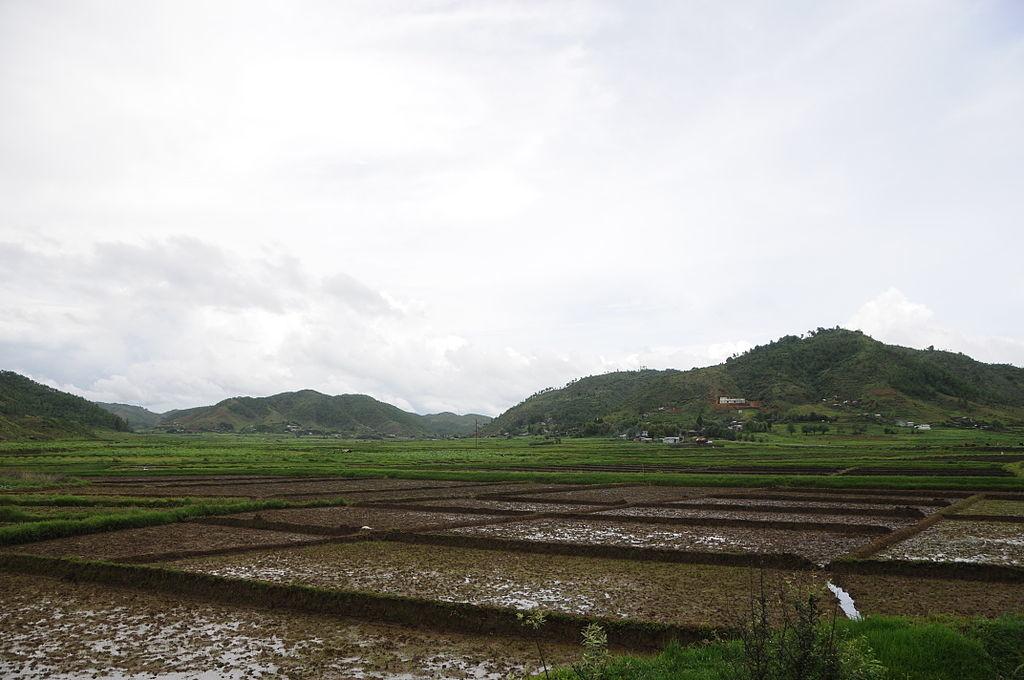 Agriculture_in_Kukon_Meghalaya_India