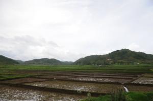 Agriculture in Kukon Meghalaya India