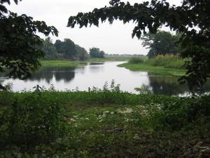 Assam 133