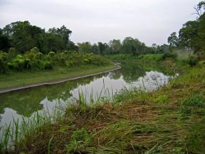 Assam edit