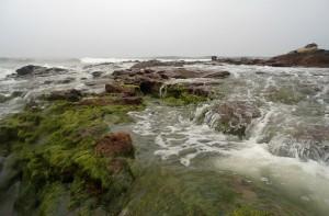 Beaches in Andhra Pradesh Bheemunipatnam beach