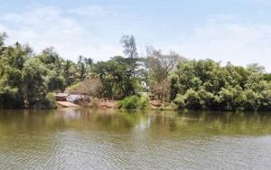 Crocodile Canal original watermark