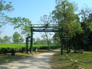 Gorumara Gateway Arnab Dutta