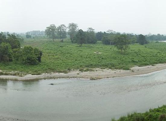 Gorumara National Park Panorama