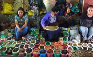 India New Market Aizawl Mizoram spices Vanessa Betts web