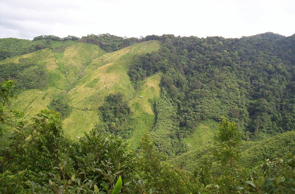 Place to visit in Meghalaya