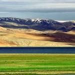 Karakoram-West_Tibetan_Plateau_alpine_steppe