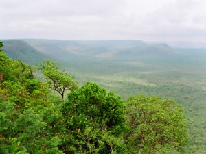 Krishna Wildlife Sanctuary 3