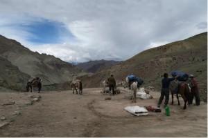 Leh Valley Ladakh 5