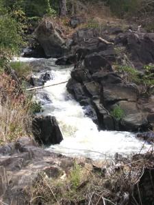 MNP Moyer River
