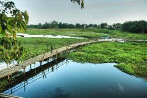 Majuli Island Assam View
