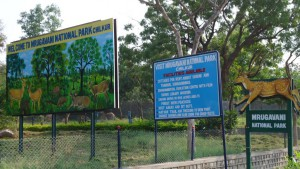 Mrugavani National ParkChilkur