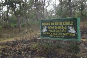 Mudumalai Welcome Sign