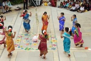 Pongal in Andhra Pradesh