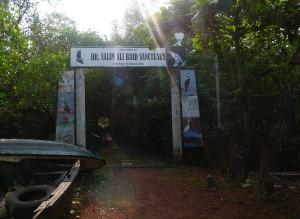 Salim Ali Sanctuary