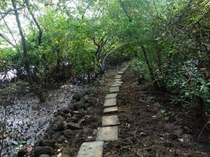 Salim ali sanctuary walkway