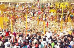Sammakka Sarakka Jatara 2016 Festival Celebration