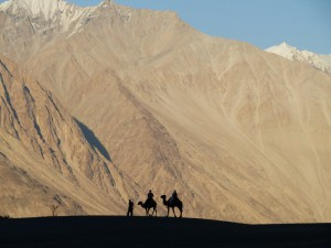 Silhouette at Nubra Valley