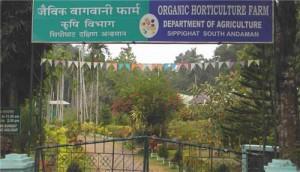 Sippiighat Agricultural Farm at Andaman
