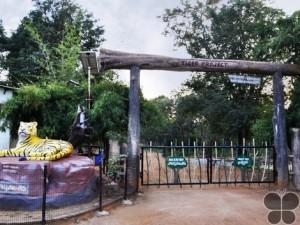 Srisailam Tiger Reserve
