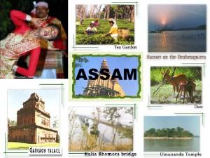 assam tourism ppt