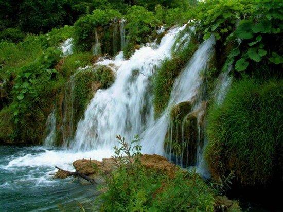 beadon-falls