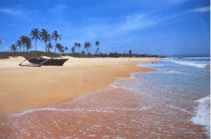benaulim beach goa view