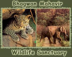 bhagwanpic