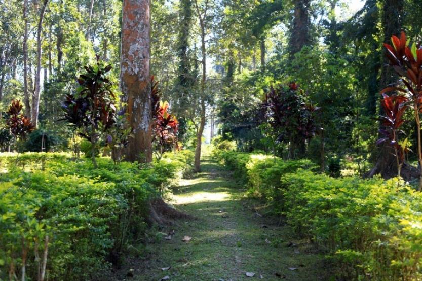 botanicalgarden-shillong