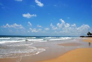 colva beach 03