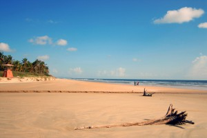 majorda beach full view