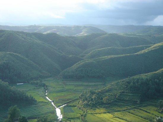 mawphlang-sacred-forest