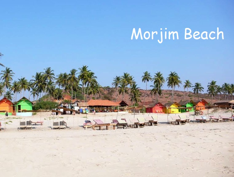 morjim-beach-goa_view