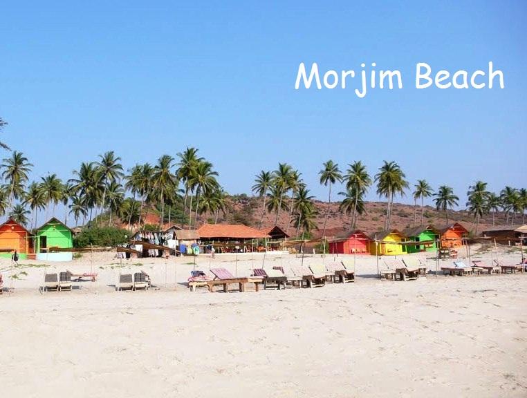 Morjim Beach Goa View Jnr Globetrotters Pvt Ltd