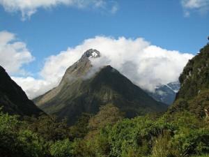 namdapha national park arunachal pradesh india 2