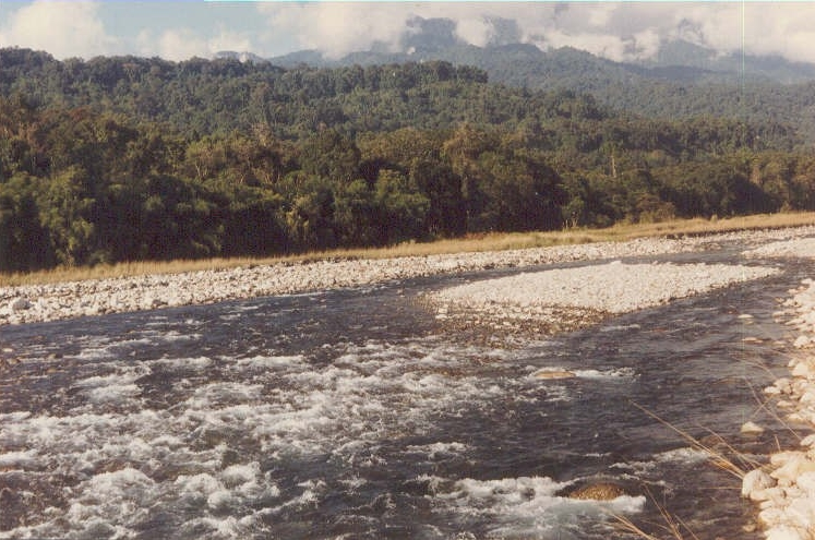 Namdapha National Park in Arunachal Pradesh