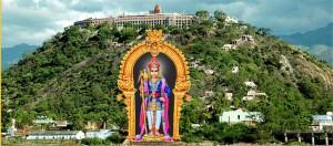 palani temple11