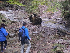phawngpui national park trekking and camping 300 225