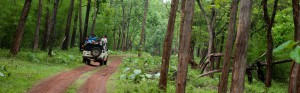reserve forests in india