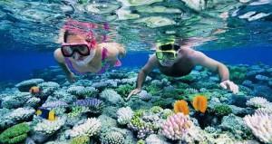 snorkeling in andaman