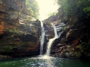 sri venkateshwara national park 1