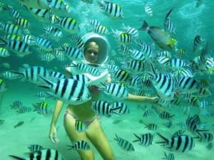 undersea walking in andaman