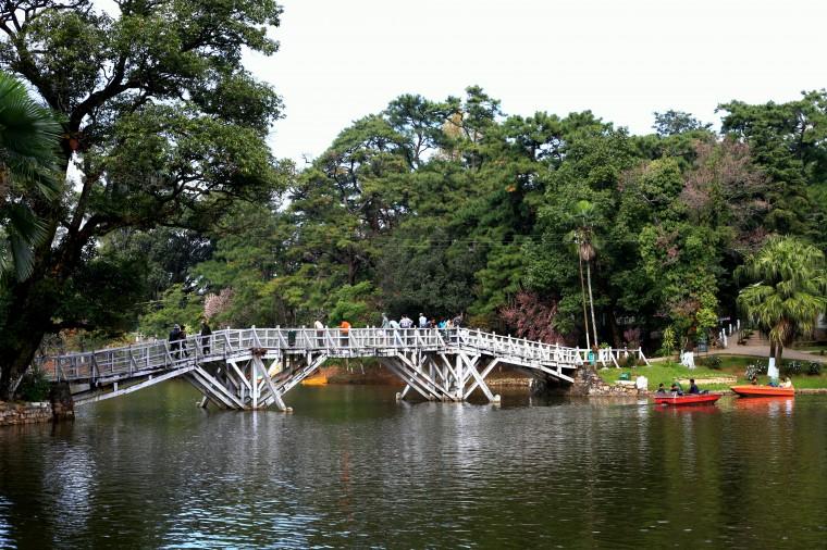 wooden-bridge-wards-lake-shillong