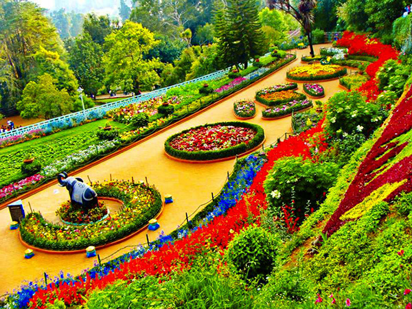 Botanical-Garden-ooty