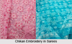 Chikan Embroidery in Sarees