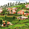 Ooty view