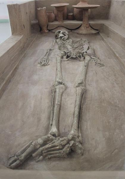 Skeleton_harappa